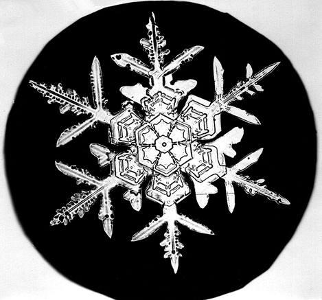Bently snowflake a