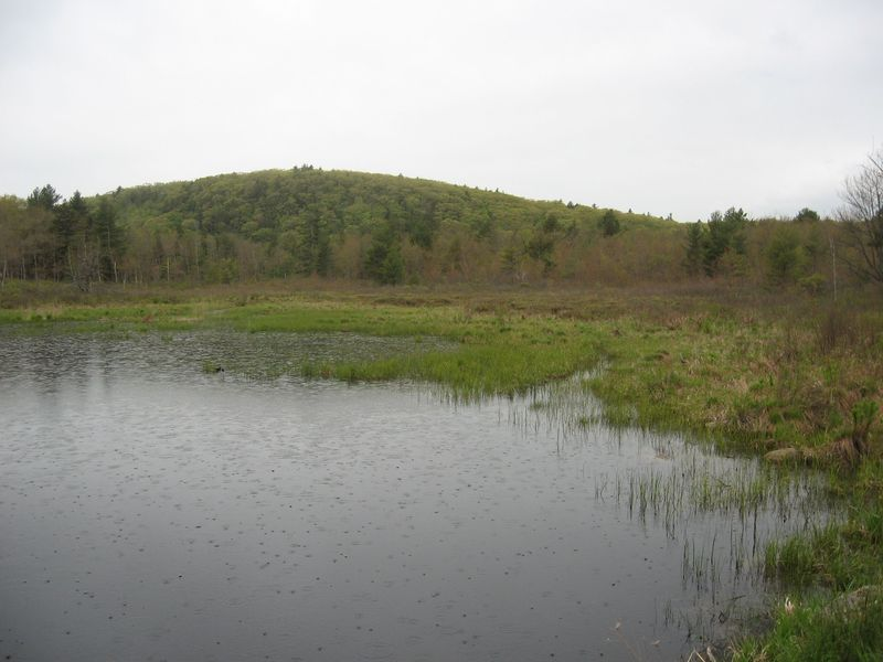 Naugatuck Mad River Headwaters Project Area