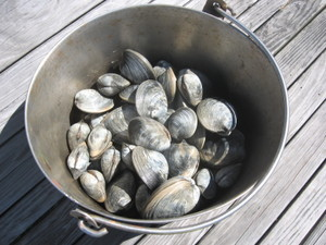 Bucket_of_clams
