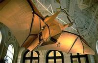 Bat_plane_2