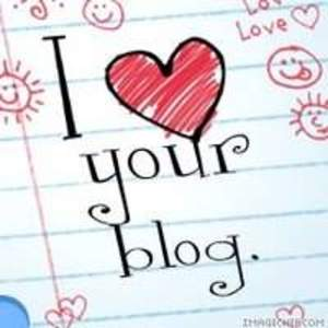 Il_your_blog_widget