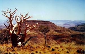 Grooberg_summit_namibia