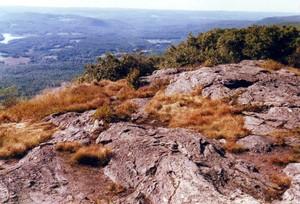 Mt_race_ridgetop